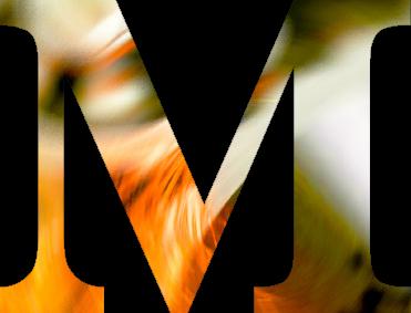 Raum-M